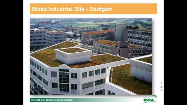 Relaunch – Hamburg's New Green Roof Strategy by Wolfgang Ansel