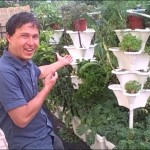 Easy Vertical Hydroponics Tower Garden – Even Beginners Can Grow Food