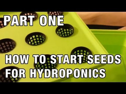 """Easy Seed Starting for Hydroponics"" by Epic Gardening"