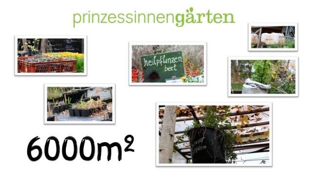 Urban Gardening in Berlin Infotrailer