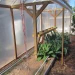 Fall/Winter Mittleider Garden Update Jan. 16