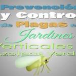 Control de Plagas en Jardines Verticales y Azoteas Verdes