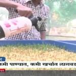 'Mati Vina Sheti' – Hydroponic System- A Unique solution to fodder scarcity
