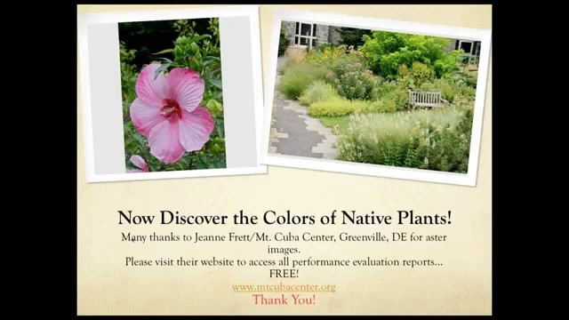 Balanced Approach to Using Colorful Natives in the Landscape
