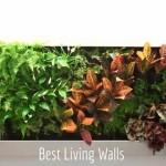 Best Living Walls. Vertical Gardens Blog. Best Living Walls. Best Vertical Gardens
