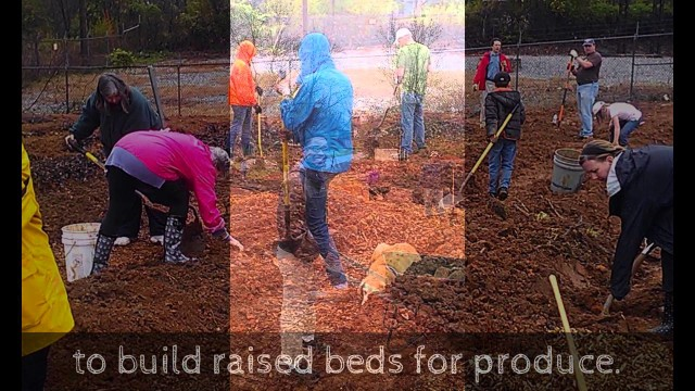 Urban Farm Update — 3/31/2014