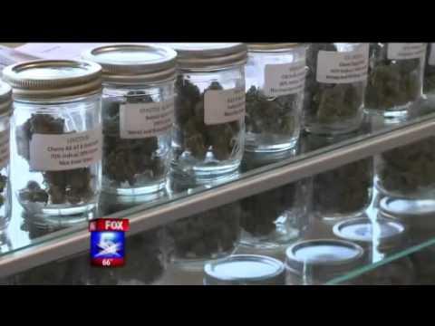 Medical Marijuana – Soccer mom teaching how to grow Marijuana – Fox 5