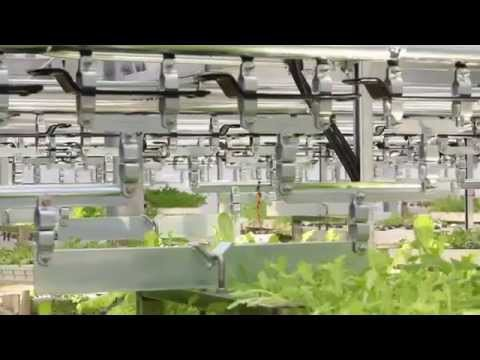 VertiCrop Vertical Farming. Good for you.  Good for our earth.