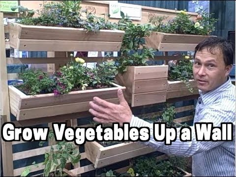 Vertical Gardening Examples at the 2014 Chicago Flower and Garden Show