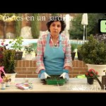[Consejos de Jardineria] Consejo 3   Jardiner