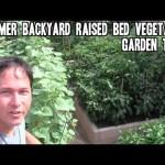 Summer Backyard Raised Bed Vegetable Garden Tour