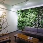 Green Living Walls | Beautiful Vertical Gardens