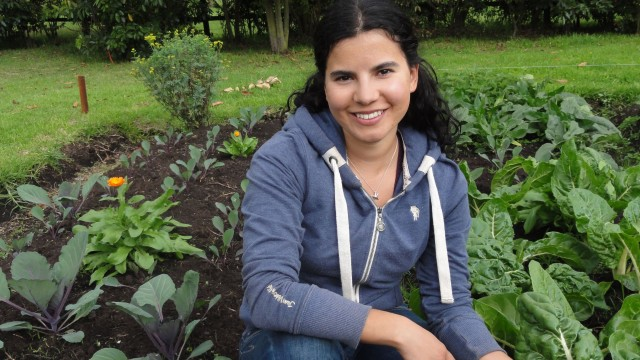 My organic vegetable garden + some tips for growing your own food!