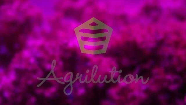 Agrilution – Vertical Farming – Thought For Food Challenge 2013 Pitch