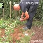 [Jardineria en Casa] Parte 2   Jardiner