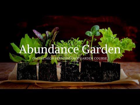The Abundance Garden Course