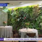 Jardines Verticales de Paisajismo Urbano en Canal 9