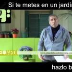 [Consejos de Jardineria] Consejo 13   Jardiner