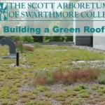 Building a Green Roof Part 4: Planting an Extensive Green Roof