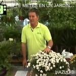 [Jardineria en Casa] Parte 12 | Jardiner