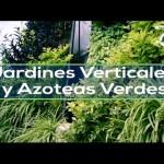 Jardines Verticales y Azoteas Verdes