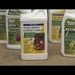 Beginners Vegetable Gardening : Organic Vegetable Gardening Tips