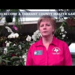 How to Become a Tarrant County Master Gardener