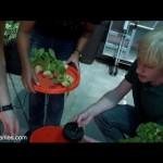 Teens create automated aeroponics garden kit with NASA tech
