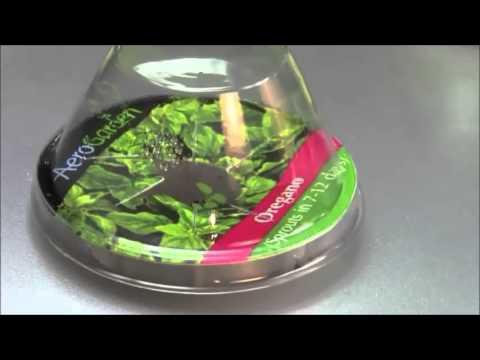 [Best Price] AeroGarden 7-Pod Indoor Garden With Gourmet Herb Seed Kit