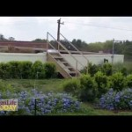 Plants challenge green roofs in Texas