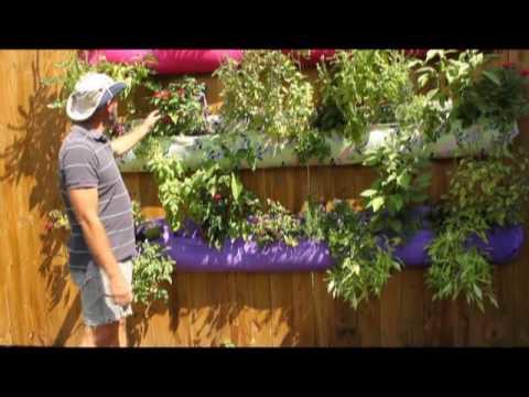 Jim Martin's vertical herb and vegetable garden
