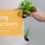 How to Start Seeds & Transplant Seedlings to Your Tower Garden