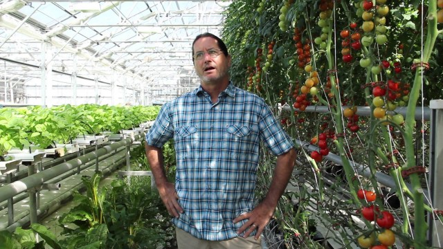 "Hydroponic Farming: ""Get to Know"" a Commercial Hydroponic Farmer"