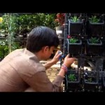Installation of Drip Irrgation System for Vertical Gardens