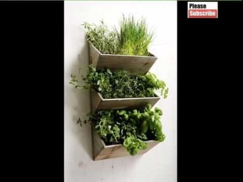 House Plant Indoor Wall Hanging S | Picture Set Of House Office Or Garden Decor Plants Romance