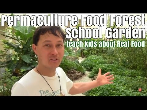 Permaculture Food Forest School Garden teach kids about Real Food