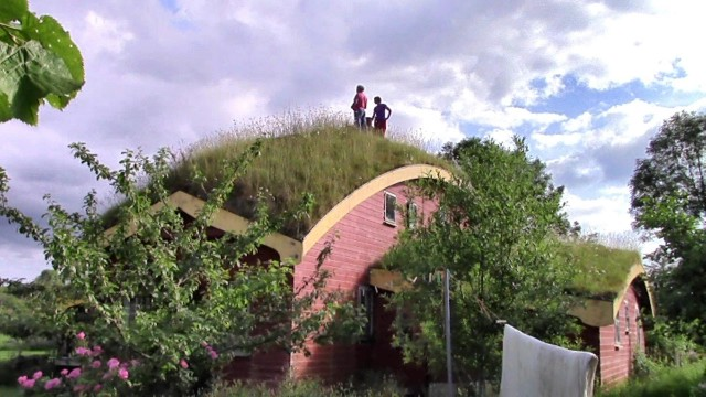 Grass Roofed House — A View From The Top