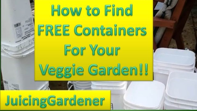 Container Garden Ideas – How To Find FREE Containers For Your Vegetable Garden