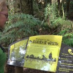 """Department of Conservation leads Councillors Down """"Garden Path"""""""