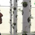 MAKE IN INDIA – MADE IN INDIA Pilot Commercial Aeroponics Vertical Farming Intro Video by Sure Grow