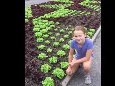 In Emma's Garden: Kid Tested Theme Gardens for Gardening with Children