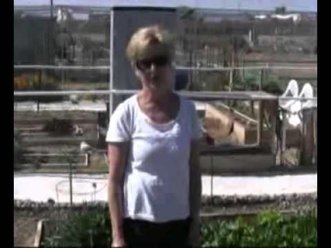 Real Gardens for Real People – Sun City, Arizona – Part 4 – 03/12/11