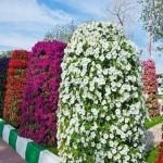 How to make Flower Tower Garden