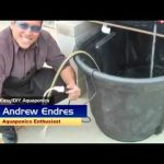 Homemade Hydroponics CRAZY GARDENING TECHNIQUE USES FISH TO GROW ORGANIC FOOD 4 TIMES FASTER