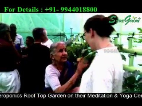 Home Roof Top Garden – Aeroponics in Urban Farming +91-9944018800