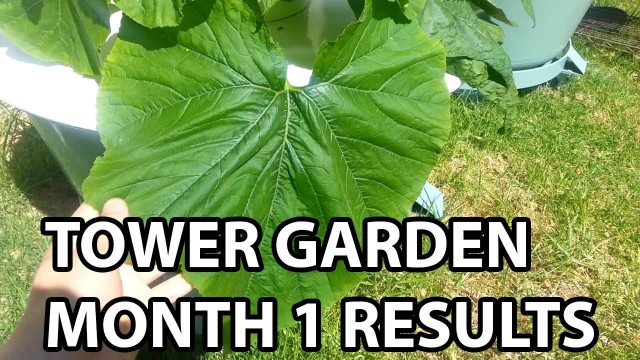 """Tower Garden One Month Results"" by Epic Gardening"