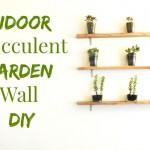 How to Make An Indoor Succulent Garden- Wall Art DIY- Minimalist Home Decor Ideas