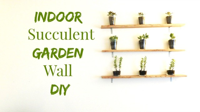 How to Make An Indoor Succulent Garden- Wall Art DIY- Minimalist Home Decor Ideas