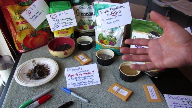 Vegetable Garden Fertilizers: Nitrogen (N), Phosphorous (P) & Potassium (K) – All the Details!