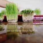 Urban Produce High Density Vertical Growing System